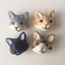 kyanecoWScat